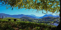 Pays Basque (FRANCOIS VEQUAUD) Tags: paysbasque ispoure landscape automne 64 pyrénéesatlantique campagne prairies banc premièresneiges