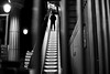 By standing up (pascalcolin1) Tags: paris13 homme man nuit night métro subway lumière light lampes lamps escalier stairs photoderue streetview urbanarte noiretblanc blackandwhite photopascalcolin 5omm canon canon50mm