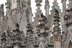 Gothic (carlo612001) Tags: gothic architecture milano italy italia