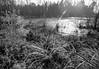 PhotoHDR-9179-CPA2 (rp culver_photography) Tags: abandonedbuildings blackandwhite tillery north carolina