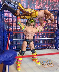 Warrior Vs Rude (2) (JoeyDee83) Tags: wwe wwf wrestling nostalgia summerslam 1990 steel cage match raw sdlive ravishing rick rude the ultimate warrior action figure review mattel