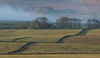 Ups and downs of farming life (Alan-Taylor) Tags: farm farmland rolling mist trees moorland outside outdoors england