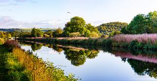 Caledonian Canal Inverness 16 September 2017 113.jpg