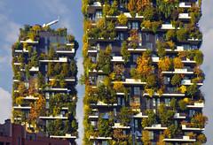 Bosco Verticale (Fil.ippo) Tags: verticalwood boscoverticale milano portanuova building tree albero autumn autunno architecture filippo filippobianchi d610 nikon