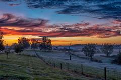 Twilight Farm - 111817-073840 (Glenn Anderson.) Tags: sun nikon outdoor sky cloud skyscape solar serene morningtwilight bluehour landscape trees ncsuresearchfarmcherryhosptial cloudsstormssunsetssunrise sunrise
