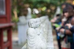 Mt.Takao (rabbit_akra) Tags: japan mttakao autumn