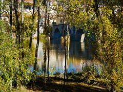 Duero empedrado (Luicabe) Tags: agua airelibre aìrbol azul cabello duero edificio enazamorado exterior luicabe luz monumento naturaleza paisaje planta puente reflejo riìo yarat1 zamora ngc árbol río