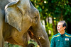 Female Asian elephant and keeper (Dakiny) Tags: 2017 autumn october japan kanagawa yokohama asahiward park city street outdoor zoo yokohamazoologicalgardens zoorasia creature animal mammal nikon d750 sigma apo 70200mm f28 apo70200mmf28exdgoshsm sigmaapo70200mmf28exdgoshsm nikonclubit