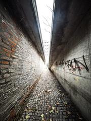 Between Walls (Ulmi81) Tags: wand wall ziegel brick beton concrete perspective perspektive standpunkt weg gasse graffitti neun ulm badenwürttemberg weitwinkel stadt city eng pflaster pflasterstein laub blätter herbst fluchtpunkt