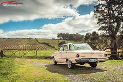 1961 XK FALCON DELUXE FORDAMATIC (spotandshoot.com) Tags: 1961 adelaide australia deluxe falcon fordomatic justcarsmagazine southaustralia xk andreymoisseyev automotive classiccar ford spotandshootcom vineyard winery woodside sa