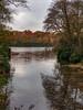 Virginia Water Lake in Autumn-EB160376 (tony.rummery) Tags: autumn autumncolours em10 lake mft microfourthirds omd olympus surrey trees virginiawater runnymededistrict england unitedkingdom gb