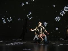 _9041492 (黎島羊男) Tags: 雲門 關於島嶼 林懷民 formosa cloudgatedancetheatre cloudgate dance theatre linhwaimin olympus em1markii zuiko 1454mm