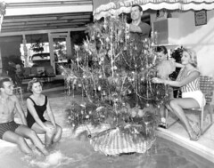 Floating Christmas tree - Fort Lauderdale (State Library and Archives of Florida) Tags: florida fortlauderdale christmastrees swimmingpools wheatfamily