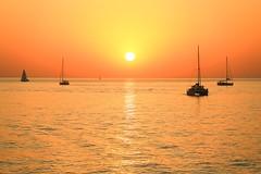 Sailing in a golden sea - Tel-Aviv beach (Lior. L) Tags: sailinginagoldenseatelavivbeach sailing golden sea telaviv beach telavivbeach israel sunset sailboats silhouettes