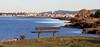 San Leandro Bay (kevinfoxphotography53) Tags: martin luther king jr regional shoreline ebparksok kevinfoxphotogrpahy arrowhead marsh trail oakland california