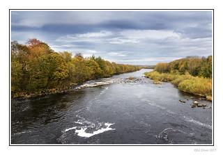 Autumn Tyne