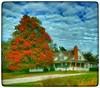 Goodbye, Autumn! (Sherrianne100) Tags: colorful autumn rural missouri