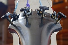 Cello Fine Tuners _6479 (Barrie Wedel) Tags: macro macromondays memberschoicemusicalinstruments instruments hmm personalproject cello finetuners