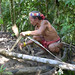 In the Mentawai rainforest - cutting the bark to make textiles