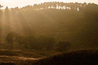 砥峰高原34・Tonomine Highland
