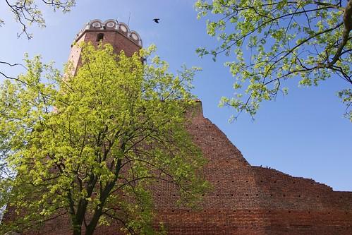 Wieża zamku w Łęczycy od południa