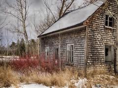 171128-33 Vieille à l'abandon (clamato39) Tags: abandoned abandon old oldhouse vieux ancient ancestrale antiquité neige snow hiver winter portneuf provincedequébec québec canada