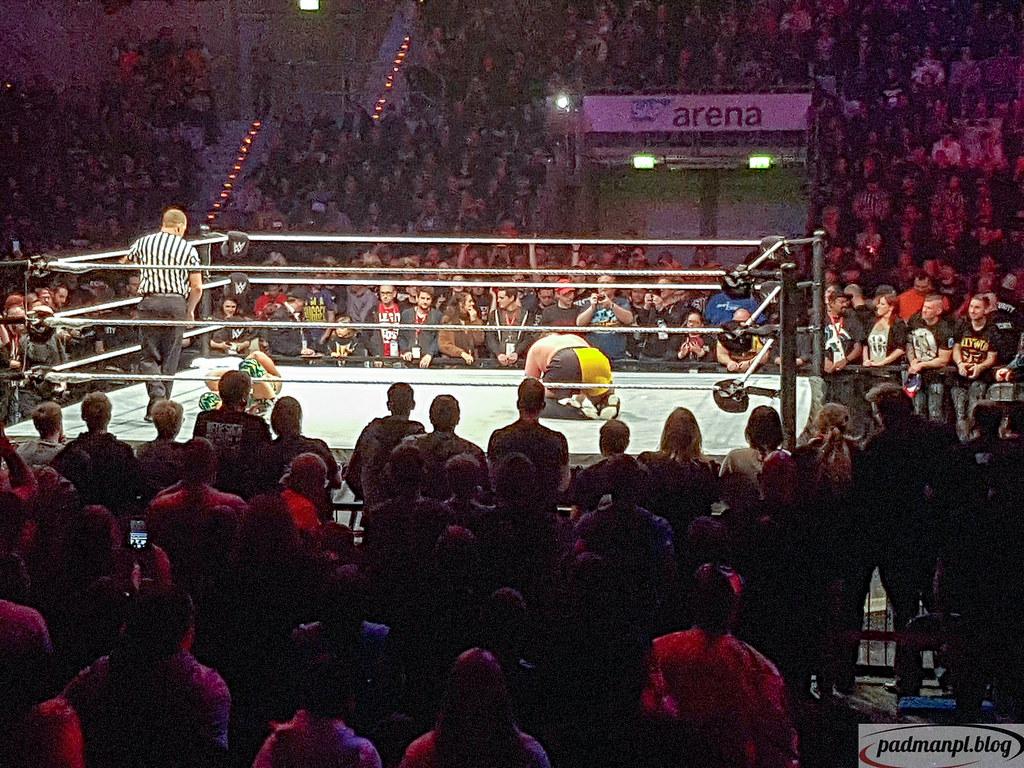 An Empirical Analysis of the Effectiveness of World Wrestling Entertainment Marketing Strategies