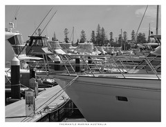 It's a perfect day but no-one bothers to take their boat out. We're terribly spoilt here in Australia. (StevePWA Cantante Photo) Tags: australia westernaustralia fremantle marine steel chrome wharves marinas jetties wharfs harbors harbours boating boats
