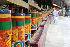 IMG_0347 (Shibalik Choudhury Nature And Wildlife Photographe) Tags: faith gangtok monastery religion buddhism place encheymonastery poeple people travel india