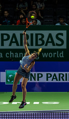 20171025-0I7A2210 (siddharthx) Tags: singapore sg simonahalep carolinegarcia elinasvitolina wtasingapore tennis womenstennis singaporeindoorstadium power grace elegance contest competition 1seed 4seed 6seed 8seed champions rally volley serve powerfulserves focus emotions sports wtatour porscheservesspeed bnpparibas stadium sport people wta winner sign crowd carolinewozniacki portrait actionshots frozenintime