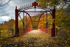 Bridge of Love (Simmie | Reagor - Simmulated.com) Tags: 2017 autumn connecticut connecticutphotographer fall fallcolor forest landscape landscapephotography loversleapstatepark nature naturephotography newengland november outdoors unitedstates woods ctvisit digital https500pxcomsreagor httpswwwinstagramcomsimmulated overcast wwwsimmulatedcom thisisexcellent