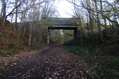 Former railway bridge near Ben Bank     Silkstone - Wath old railway    November 2017 (dave_attrill) Tags: bridge silkstonecommon great central railway electrified woodhead sheffield victoria manchester picadilly closed 1970 1955 stocksbridge engine transpennine upper don trail penistone wortley wadsley neepsend dunford thurgoland tunnel oxspring barnsley junction huddersfield allweather cycleway bridleway footpath remains silkstone 2016 1981 dove valley no1 road tree grass sky worsbroughbranch