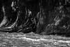 wilds (jellamalo) Tags: nature hike river adventure blakandwhite