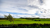 The adjacent dirt road winds through beautiful farmland near Clava Cairns - Inverness, Scotland (Paul Diming) Tags: pauldiming unitedkingdom scotland 2012natureconservancy photocontesttnc12 cairns greatbritain inverness landscape balnuaranofclava clavacairns fall uk cairn