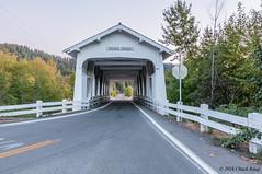 Lone Survivor 1 (chuck_raup) Tags: bridge coveredbridge history white road tree trees transportation naturallight nikon nikond90 tamron tamron1750 oregon usa
