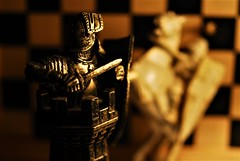 Tower takes Knight (Lenaprof) Tags: macromondays gamesorgamepieces