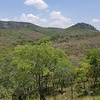 06. Great East Road Forest (ColaLife) Tags: colalife rohit kyts kytsace chipata