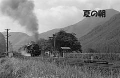 kemuri081 (railbus asano) Tags: railway jnr d60 cedar grove