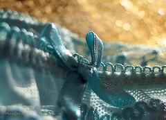The Little Bow ... (MargoLuc) Tags: macromondays buttonsandbows theme bow verdeacqua golden bokeh macro lace light