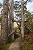 1709_mbe_uk_scotland_162 (Marcel Berendsen - The Netherlands) Tags: greatbritain schotland scotland travel unitedkindom countrified engeland holiday landelijk landscape landschap reisfotografie reizen rural scenery scenic sightseeing travelphotography uk vakantie