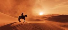 Sundown Trail (~Scimo~) Tags: screenshot sunset desert sand sun horse rider ps4 sonnenuntergang sonne wüste reiter origins pferd trail sky