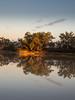 cullyamurra sunrise - 2034 (liam.jon_d) Tags: australia australian billdoyle coopercreek cooperscreek cullyamurra cullyamurraexclosure cullyamurrawaterhole desert inland inlandwaterway innamincka innaminckaregionalreserve innaminckarr landscape oasis outback regionalreserve remote remotearea reserve sa southaustralia southaustralian waterway pickmeset bestlandscapeimset 100mostrecentmostinteresting mostrecmostintimset popularimset