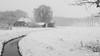 DN9A6734 (Josette Veltman) Tags: sneeuw snow heino snowflakes sneeuwvlokken overijssel salland nederland