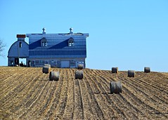 blue barn and corn rolls (David Sebben) Tags: cedar iowa blue barn corn rolls winter