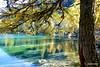 Lai da Polpuogna - Palpuognasee (HITSCHKO) Tags: schweiz suisse svizzera switzerland graubünden bündnerland albula alvra laidapolpuogna palpuognasee albulapass passdall'alvra albulatal tiefencastel engadin lapunt bergün