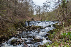 River Darwen in Hoghton Bottoms