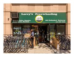 160512_1122_160512 131114_New York (A Is To B As B Is To C) Tags: aistobasbistoc usa newyork newyorkstate roadtrip travel iphone5s manhattan cathedralpkwy w110thst larrysfreewheeling bikeshop larry bike shop street streetphotography customer tiger sidewalk biking cycling liv
