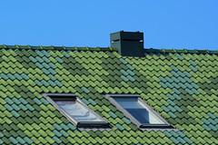 Roof with green tiles (Jan van der Wolf) Tags: map153132ve roof dak tiles rooftiles green groen chimney schoorsteen house huis
