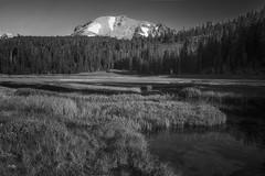 Sierra Meadow (NormFox) Tags: bw california cascades creek grass landscape lassen meadow monochrome mountains outdoors park rocks sierra snow stream trees volcano