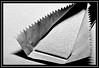 """Stick of Chewie..."" -- MACRO MONDAYS - 11.12.17 - ""Stick"" (NikonShutterBug1) Tags: macro closeup nikond7100 macromondays spe smartphotoeditor tamron60mmmacro chewinggum blackandwhite stick 7dwf"